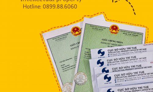 Hướng dẫn nộp đơn đăng ký nhãn hiệu trực tuyến và qua đường bưu điện – Tháng 6/2021