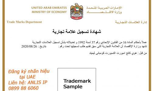 Làm gì sau khi đã bảo hộ nhãn hiệu tại UAE – 2021